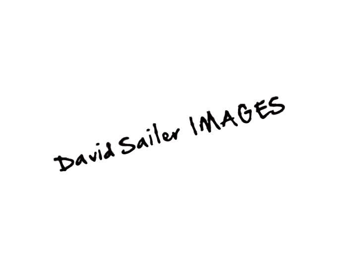 David Sailer